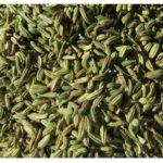 fenel seeds